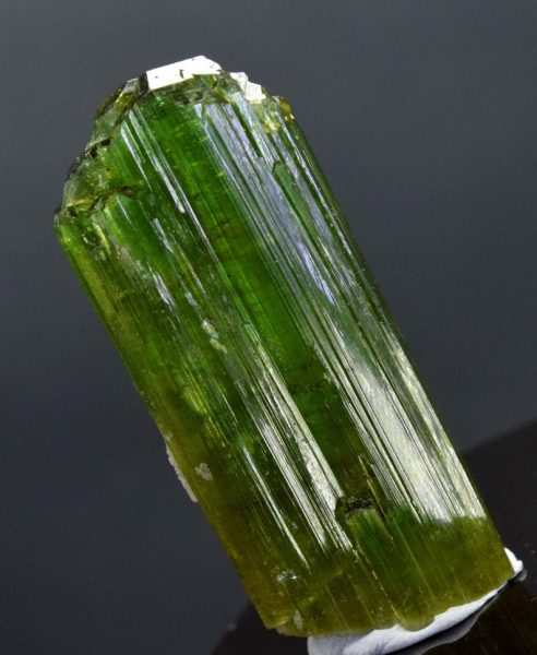 MP03-126 , 209.20 carats Terminated And Undamaged Gem Grade Natural Tourmaline Crystal From Paproke Afghanistan - 63*26*13 mm