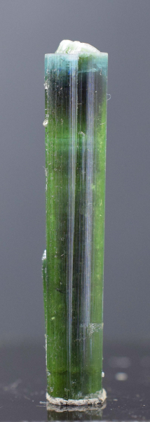 MP03-255 , 24.5 Carats Stunning Terminated And undamaged Blue Cap Bi-Color Tourmaline Crystal From Pech Mines Afghanistan - 43*7*7 mm