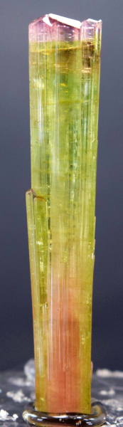 MP01-65 46.70 cts Terminated & Undamaged Bi-Color Gemmy Tourmaline Crystal From Paprok - 60*11*09 mm