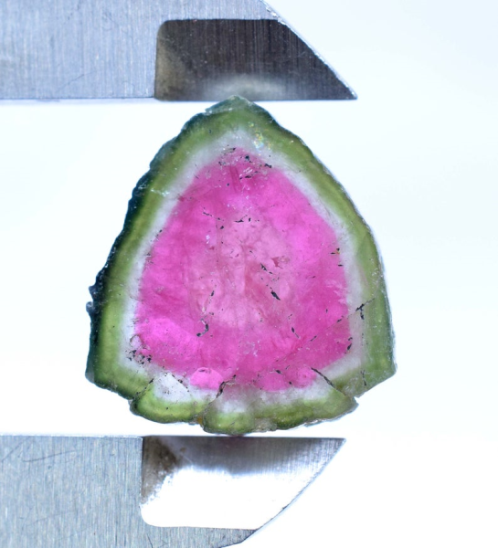MP02-344 , 16 carats Watermelon Tourmaline Slice from Paprok Afghanistan - 20*18*04 mm