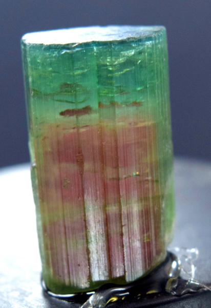 MP01-157 - 46.95 carats Terminated Watermelon Bi-Color Afghan Tourmaline Crystal @ Paproke - 23*14*12 mm