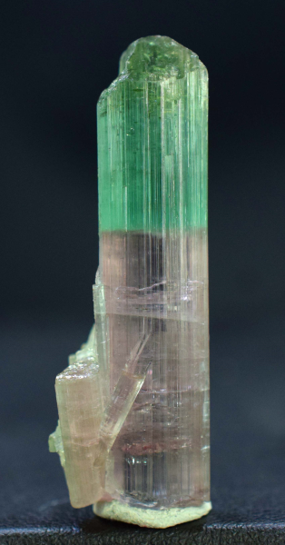 36.75 cts Terminated Bi Color Natural Tourmaline Crystal - 39*14*13 mm