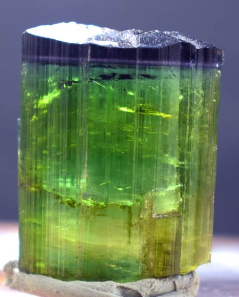 Tourmaline Crystal , Blue Cap Tourmaline Crystal from Afghanistan - 14 Gram , 30*23*10 mm