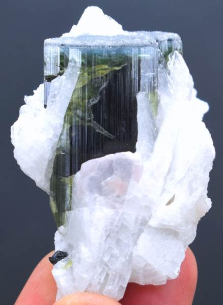 Tourmaline Crystal , Blue Cap Tourmaline Specimen with Cleavlandite Albite from Paprock Afghanistan - 67 Gram , 43*37 mm