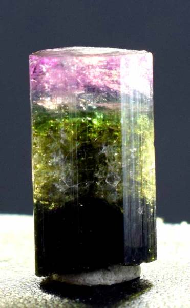 Tourmaline Crystal , Natural Tri-Color Tourmaline terminated Crystal - 24.65 carats - 20*11 mm