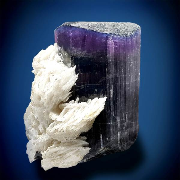 Tourmaline, Terminated Blue Purple Tourmaline Crystal with Cleavelindite from Paprock - 570 Gram - 76*81*68 mm