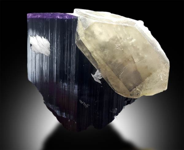 Purple Cap Tourmaline Crystal with Smoky Quartz Specimen from Paprok Afghanistan - 363 g , 92*76*44 mm